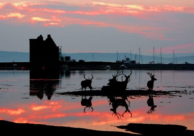 Lochranza, Isle Of Arran, Castle, Reflected, Scotland
