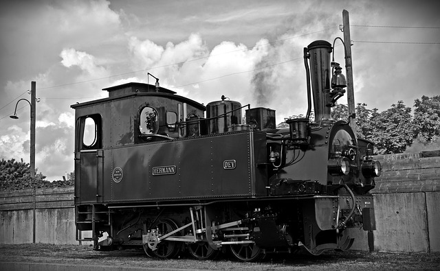 Loco, Steam Locomotive, Hermann, Locomotive