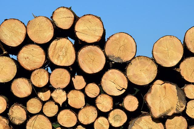 Background, Pile, Firewood, Tribe, Section, Log, Stack