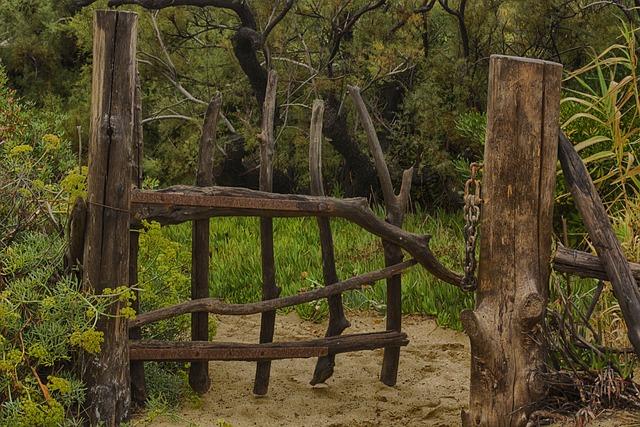 Wood, Mood, Log, Idyllic, Old, Nature
