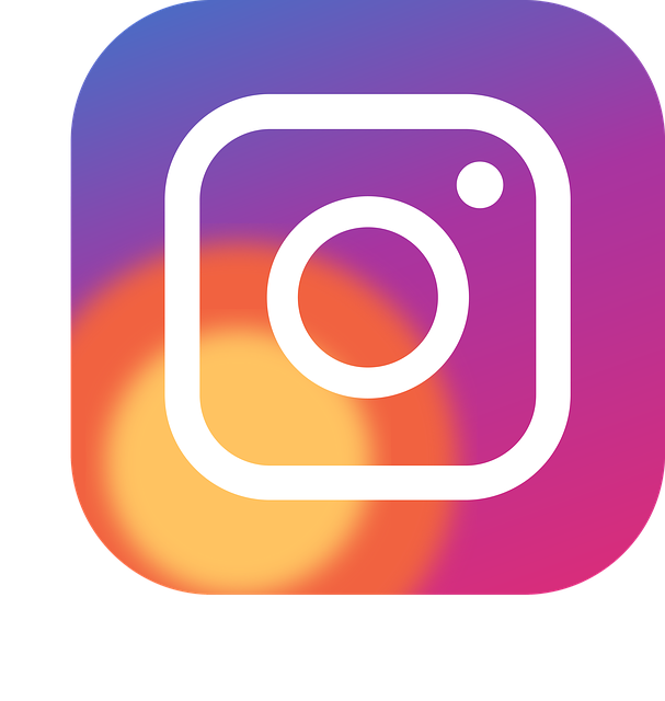 Icon, Button, Logo, Social Networks, Instagram, 2016