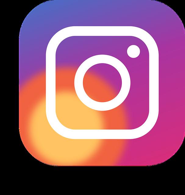 Icon, Button, Logo, Social Networks, Instagram, 2016