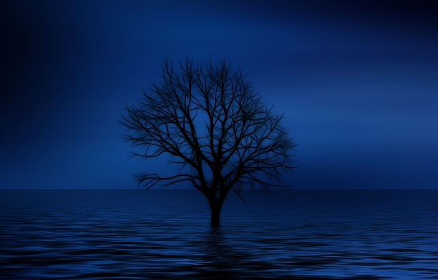 Tree, Kahl, Psychology, Loneliness, Isolation, Sadness