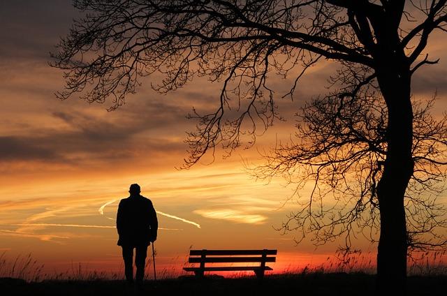 Sunset, Tree, Silhouette, Dusk, Lonely, Abendstimmung