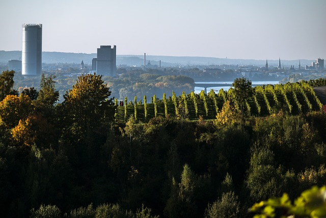Bonn, Skyline, Skyscrapers, Bonn Tower, Long Eugen