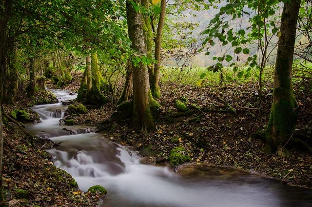 Bad Urach, Germany, River, Long Exposure, Landscape