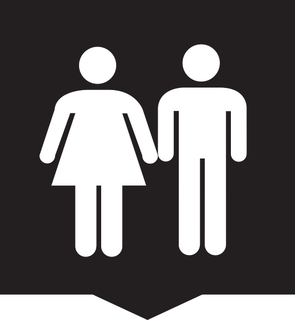 Toilet, Loo, Man, Woman, Wc, Public Toilet, Public