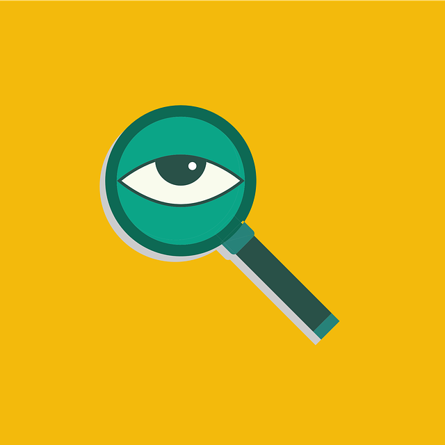 Search, Look, View, Zoom, Eye, Looking, Research, Find