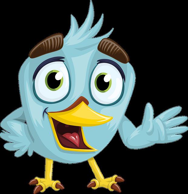 Bird, Beak, Charming, Eyes, Looking, Blue, Feather