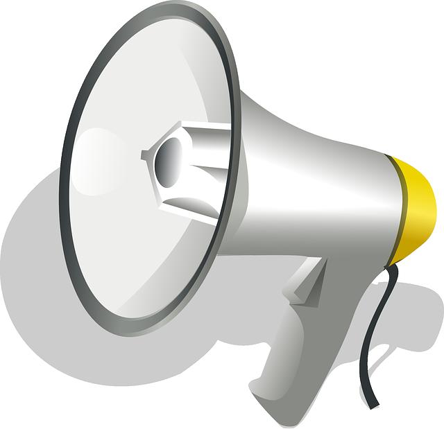 Loudspeaker, Sound, Speaker, Electrical, Signal