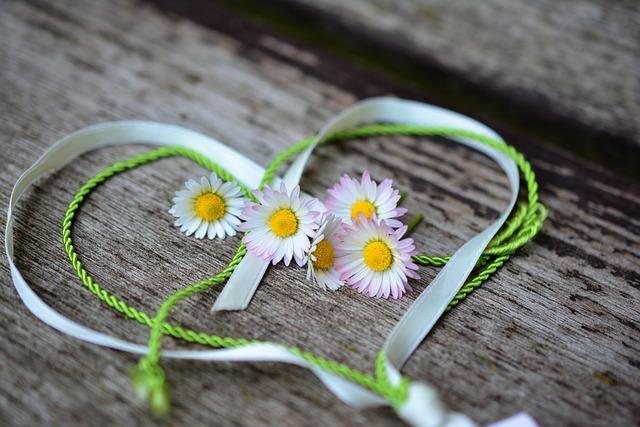 Daisy, Heart, Romance, Valentine's Day, Love, Spring