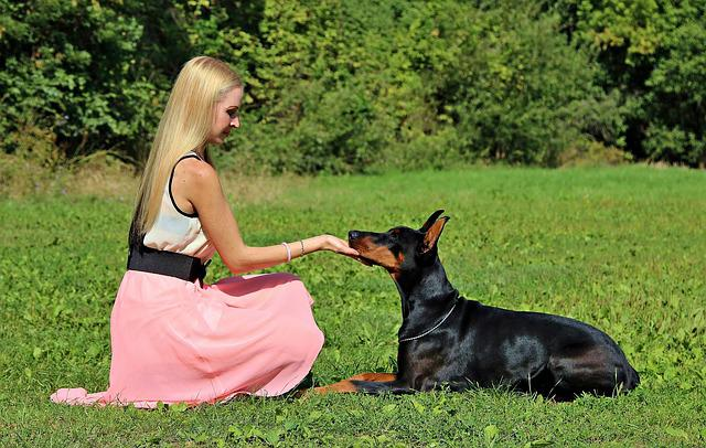 Doberman, Dog, Blonde Girl, Friendship, Love
