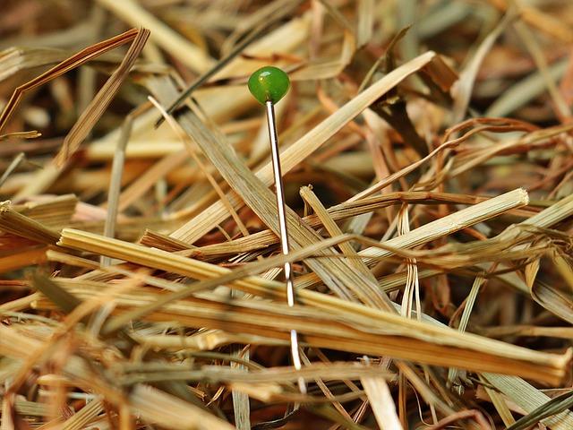 Needle In A Haystack, Needle, Haystack, Love, Pin