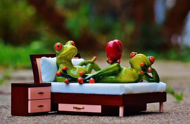 Frog, Love, Bed, Bedside Table, Heart, Figure, Funny
