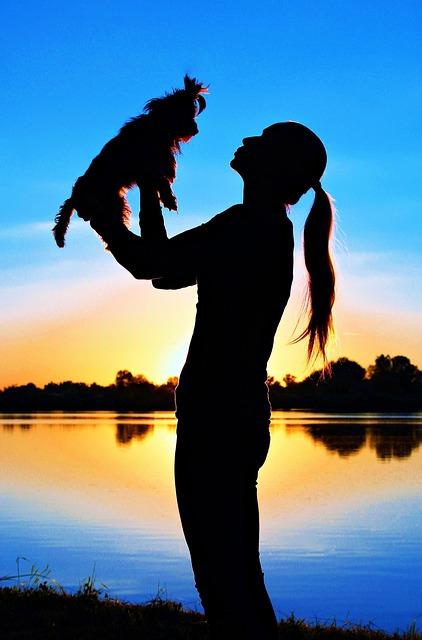 Yorkshire Terrier, Woman, Silhouette, Sunrise, Love