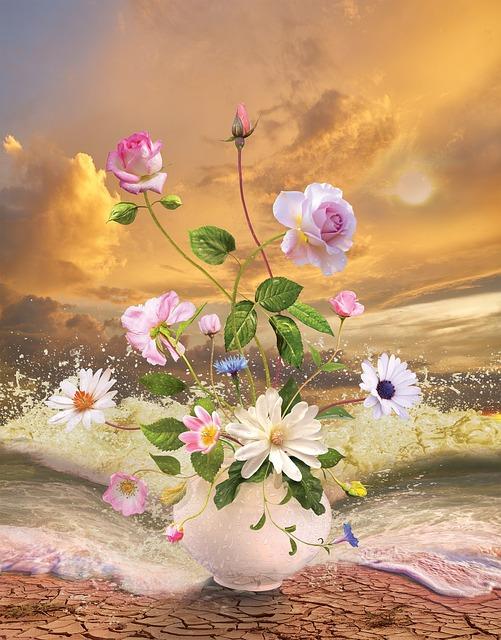 Flower, Nature, Plant, Lovely, Summer, Blooming