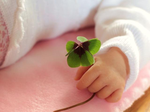Four Leaf Clover, Luck, Baby, Shamrocks, Clover, Klee