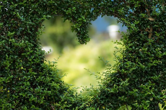 Heart, Herzchen, Love, Romance, Luck, Valentine's Day