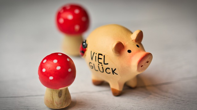 Lucky Pig, Luck, Lucky Charm, Lucky Guy, Red, Pig