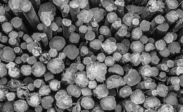 Logs, Logging, Forestry, Industry, Cut, Wood, Lumber