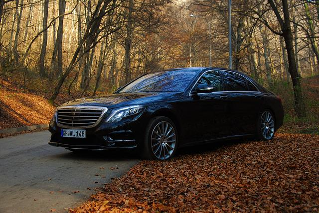 Auto, Autumn, Benz, Luxury Car, Mercedes, S Class