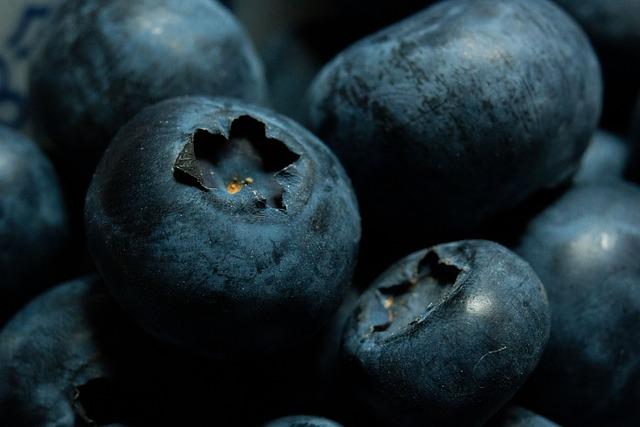 Blueberries, Bilberry, Macro, Fruit
