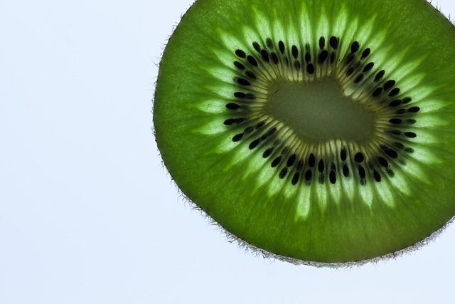 Kiwi, Transmitted Light, Green, Macro