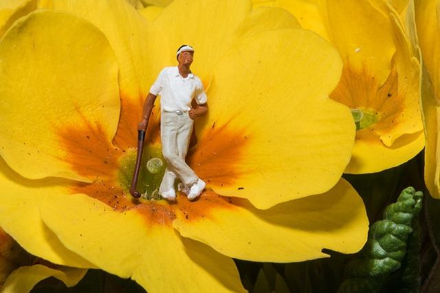 Miniature, Photography, Golf, Flowers, Macro, Close