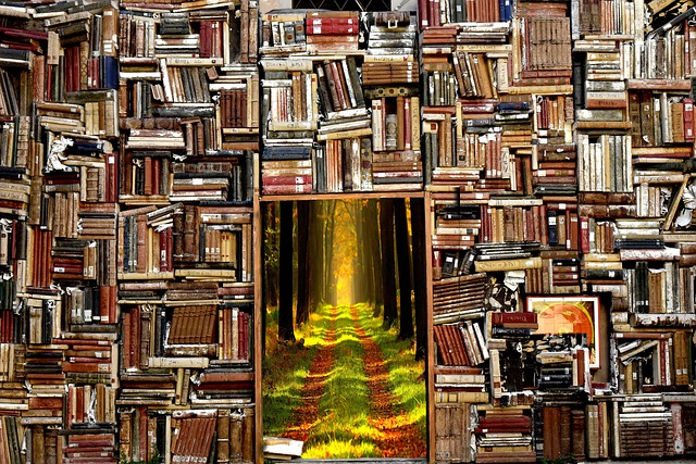 Books, Story, Forest, The Magical World, Magic, Door