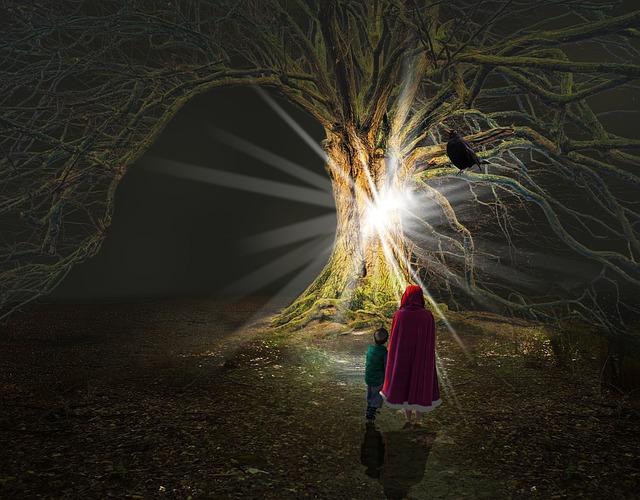 Light, Outdoors, Tree, Magic