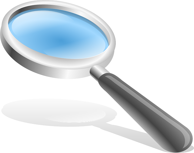 Magnifying Glass, Hand Glass, Magnify, Enlarge, Lens