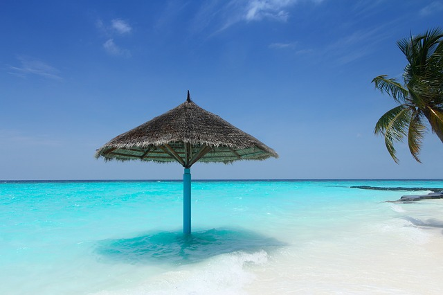 Maldives, Palm Trees, Beach, Summer, Sun, Water, Booked