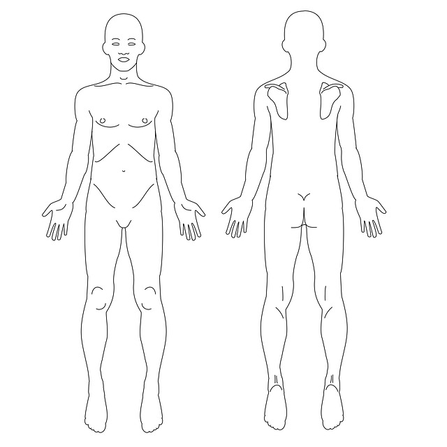 Males, Body, Male, Human, Fig, Anatomy