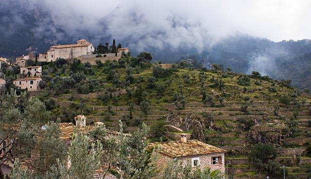 Landscape, Balearic Islands, Mallorca, Fog