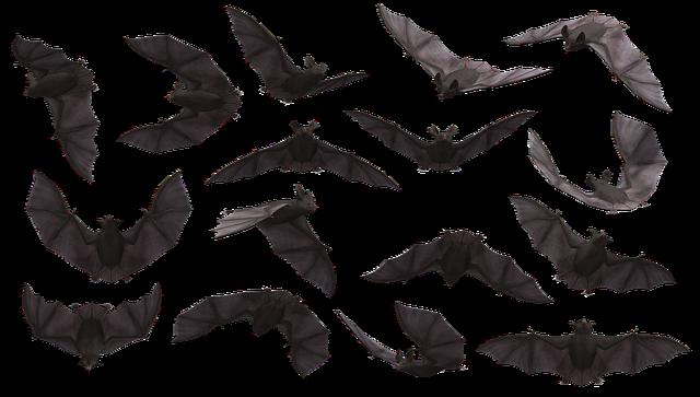 Bat, Bats, Flying, Mammal, Scary, Creepy, Eerie