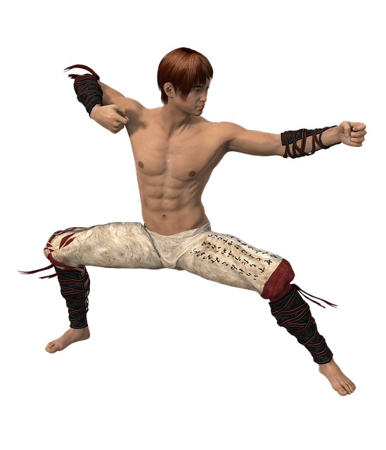 Man, Martial Arts, Fighter, Asian Martial Arts, Pose