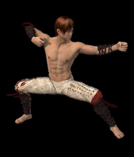 Man, Martial Arts, Fighter, Asian Martial Arts, Pose