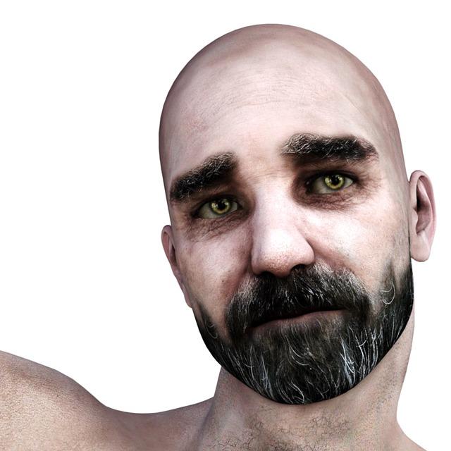 Man, Bart, Bald Head, Face, Human, Portrait, Old, Head