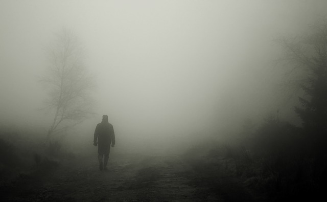 Walkers, Autumn, Fog, Man, Human, Mood, Atmosphere
