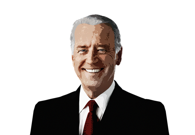 Man, Politician, Joe Biden, United States, President