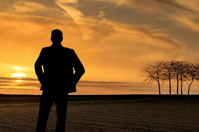 Man, Relaxing, Panoramic, Looking, Sunset, Dawn, Sun