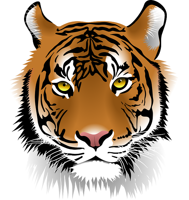 Tiger, Sumatran Tiger, Wildlife, Man-eater, Wildcat