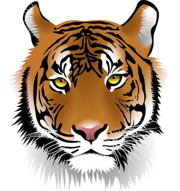 Tiger, Sumatran Tiger, Wildlife, Man-eater, Wildcat