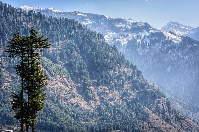 Manali, Himalayas, Quiet, Backdrop, Landscape