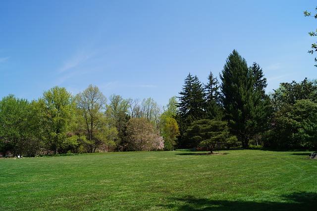 Park, Yard, Trees, Landscape, Landscaping, Manicured