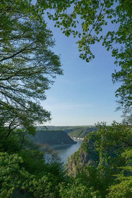 Loreley Views, Maria Ruh, Arable, Sankt Goar, Nature