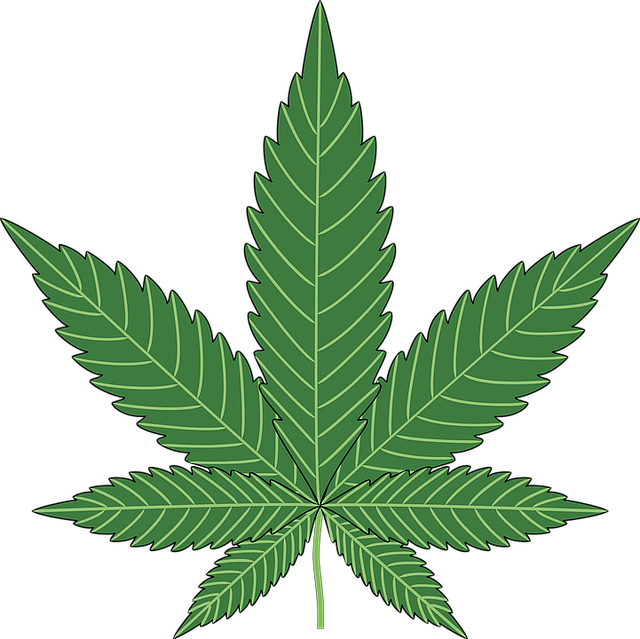 Baking, Cannabis, Hemp, Leaf, Marijuana, Plant, Pot