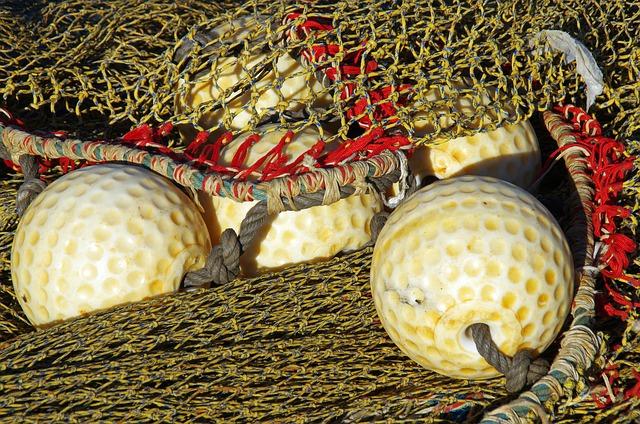 Port, Netting, Bowls, Fishing, Fishing Nets, Marin