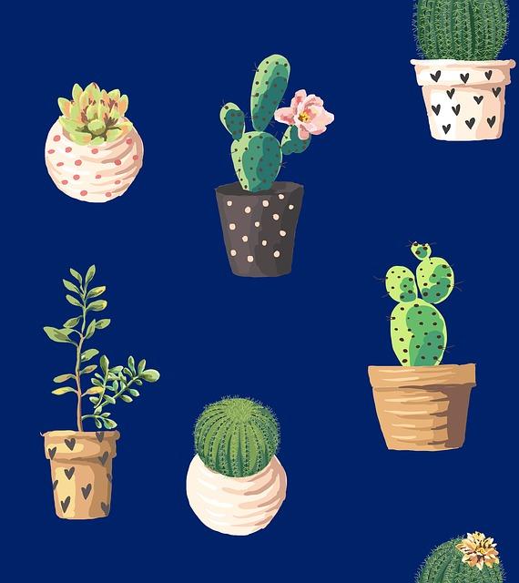 Cacti, Northeast, Marine