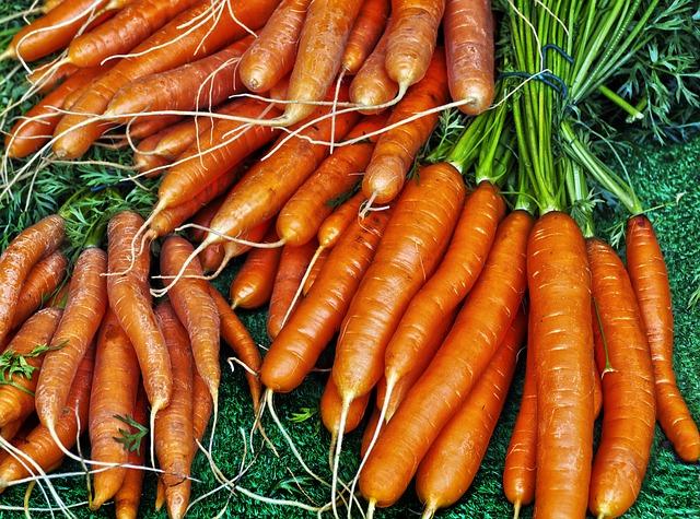 Carrot, Yellow Beet, Carrots, Mario, Daucus Carota